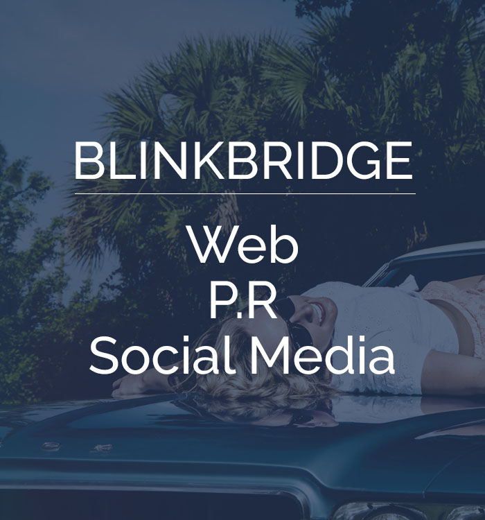 blinkbridge client